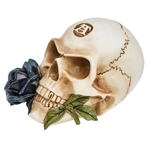 Alchemist Skull - with Black Rose