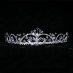Crystal Bead Spray Tiara 172-14651
