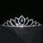 Dangling Leaf Spread Tiara 172-14990
